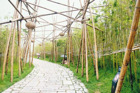 西安世园会里的竹子 其声萧萧心自清远